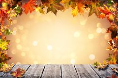 Autumn background with falling leaves Stock Photos