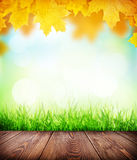 Autumn background with floor, grass and bokeh Royalty Free Stock Photo