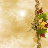 Autumn background with foliage Stock Image