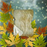 Autumn background with foliage Stock Images