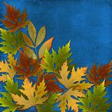 Autumn background with foliage and grunge papers Royalty Free Stock Image