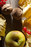 Autumn background. Food. Royalty Free Stock Images