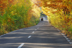 Autumn background with forest and wagon on road Stock Photo