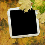 Autumn background with frame Stock Image