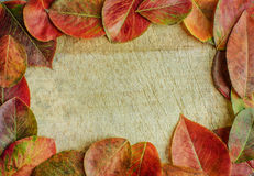 Autumn background frame. Autumn leaves on a wooden background with copy space Stock Photography
