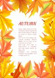 Autumn Background with Frame Made of Leaves Vector Stock Photography