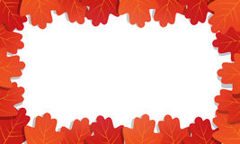 Autumn background. Frame of vector oak leaves.   Royalty Free Stock Images
