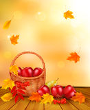 Autumn background with fresh fruit in basket. Heal Royalty Free Stock Photography