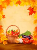 Autumn background with fresh vegetables in basket. royalty free illustration