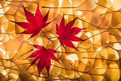 Autumn Background From Gingko Biloba, Maple Leaves Royalty Free Stock Photo