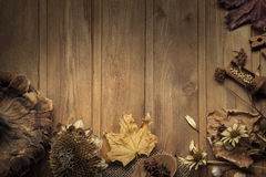 autumn background with fruits and spices with dried flowers place for inscription royalty free stock images