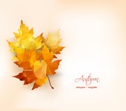Autumn background with geometrical leaves. Back to school Stock Photo