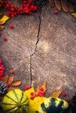 Autumn background gifts nature wood Stock Photo