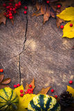 Autumn background gifts nature wood Royalty Free Stock Photos