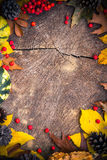 Autumn background gifts nature wood Stock Photography