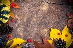 Autumn background gifts nature wood Royalty Free Stock Photo