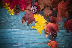 Autumn background gifts leaves nature wood Royalty Free Stock Images