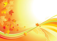 Autumn Background / gold leaves royalty free illustration
