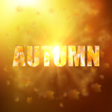 Autumn background with gold maple leaves. And bokeh lights with sunny sky, fall vector illustration Royalty Free Stock Images