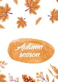 Autumn background with golden maple and oak leaves. paper illustration. royalty free stock photos