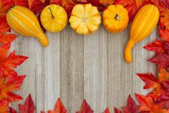 Autumn background with gourds and fall leaves on weathered wood Stock Photos