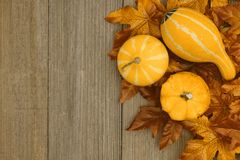 Autumn background with gourds and fall leaves on weathered wood royalty free stock photos