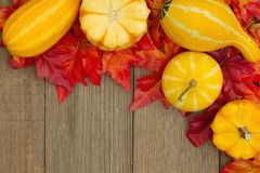 Autumn background with gourds and fall leaves on weathered wood stock photography