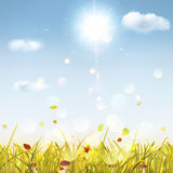 Autumn background with grass, mushrooms, sun and clouds Stock Images