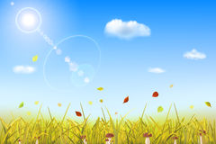 Autumn background with grass, mushrooms, sun and clouds Royalty Free Stock Photo