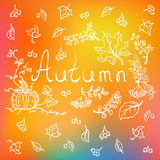 Autumn background with hand drawn elements. Autumn, fall background with hand drawn leaves, berries, pumpkin, letters and blurred background, vector illustration Stock Photo