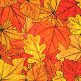 Autumn background with hand drawn golden leaves Royalty Free Stock Photos