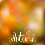 Autumn background with hand drawn lettering Stock Image