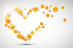 Autumn  background. Heart form. Royalty Free Stock Photo