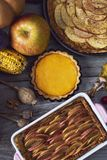 Autumn background. Homemade Pumpkin, apple Pies for Thanksgiving stock image