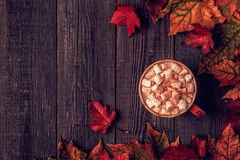 Autumn background with hot chocolate, knitted scarf, multi-color Stock Photography