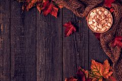 Autumn background with hot chocolate, knitted scarf, multi-color Royalty Free Stock Image