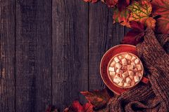 Autumn background with hot chocolate, knitted scarf, multi-color Royalty Free Stock Photos