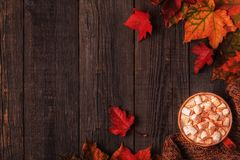 Autumn background with hot chocolate, knitted scarf, multi-color Stock Photos