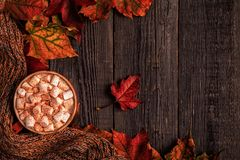 Autumn background with hot chocolate, knitted scarf, multi-color Royalty Free Stock Images