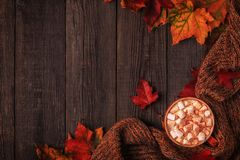 Autumn background with hot chocolate, knitted scarf, multi-color Stock Photo