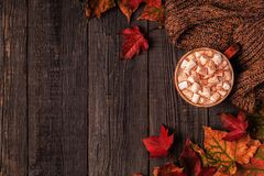 Autumn background with hot chocolate, knitted scarf, multi-color Stock Image