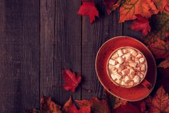 Autumn background with hot chocolate, knitted scarf, multi-color Stock Images