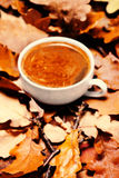 Autumn background with hot coffee cup over autumn colourful leav Royalty Free Stock Photos