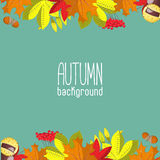 Autumn background for invitation or ad template with wreath from bright leaves, seeds and nuts. Royalty Free Stock Photos