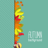 Autumn background for invitation or ad template with wreath from leaves, seeds and nuts. Flat  illustration Stock Photo