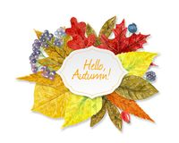 Watercolor autumn background Royalty Free Stock Images