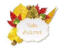 Watercolor autumn background Stock Photography