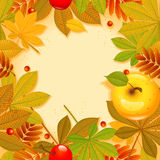 Autumn background. With leaf.  Happy thanksgiving day. eps 10 Stock Images