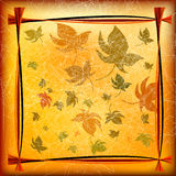 Autumn Background with Leafs Stock Photo
