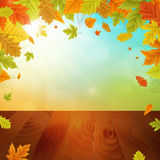 Autumn  background with leafs. Autumn  background with colored leafs and wooden board. isolated Stock Photography